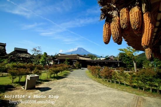 藁葺き屋根のトウモロコシから望む富士山遠景